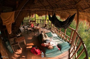 Treehouse at the Gibbon Spa - Laos