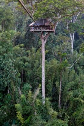 Ziplining has taken off in Laos
