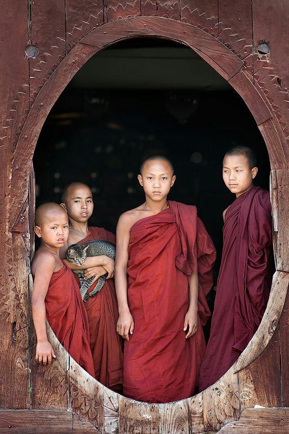 The Monks in Cambodja