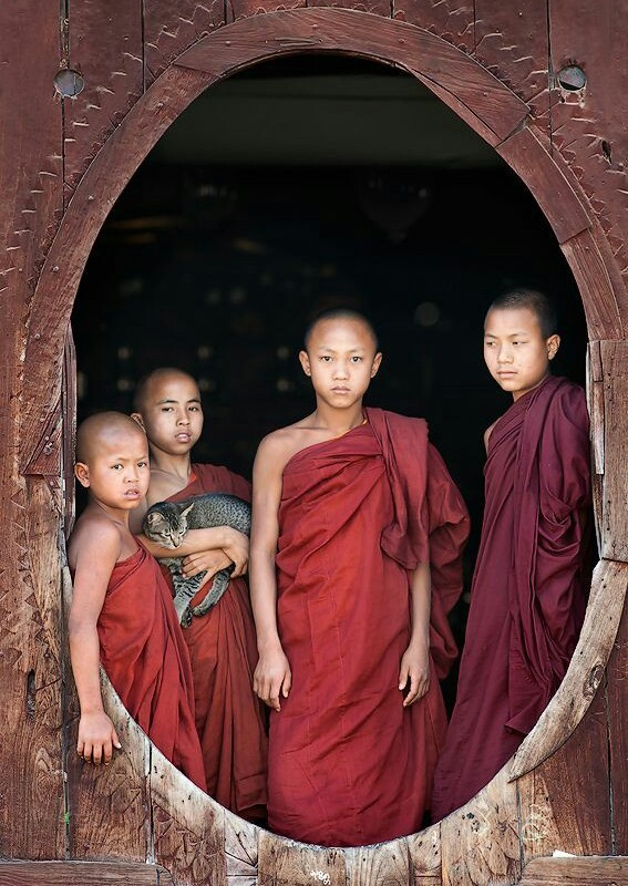 The Monks in Cambodja