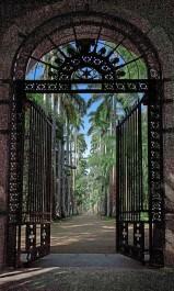 Botanical garden Rio de Janeiro - top attraction!