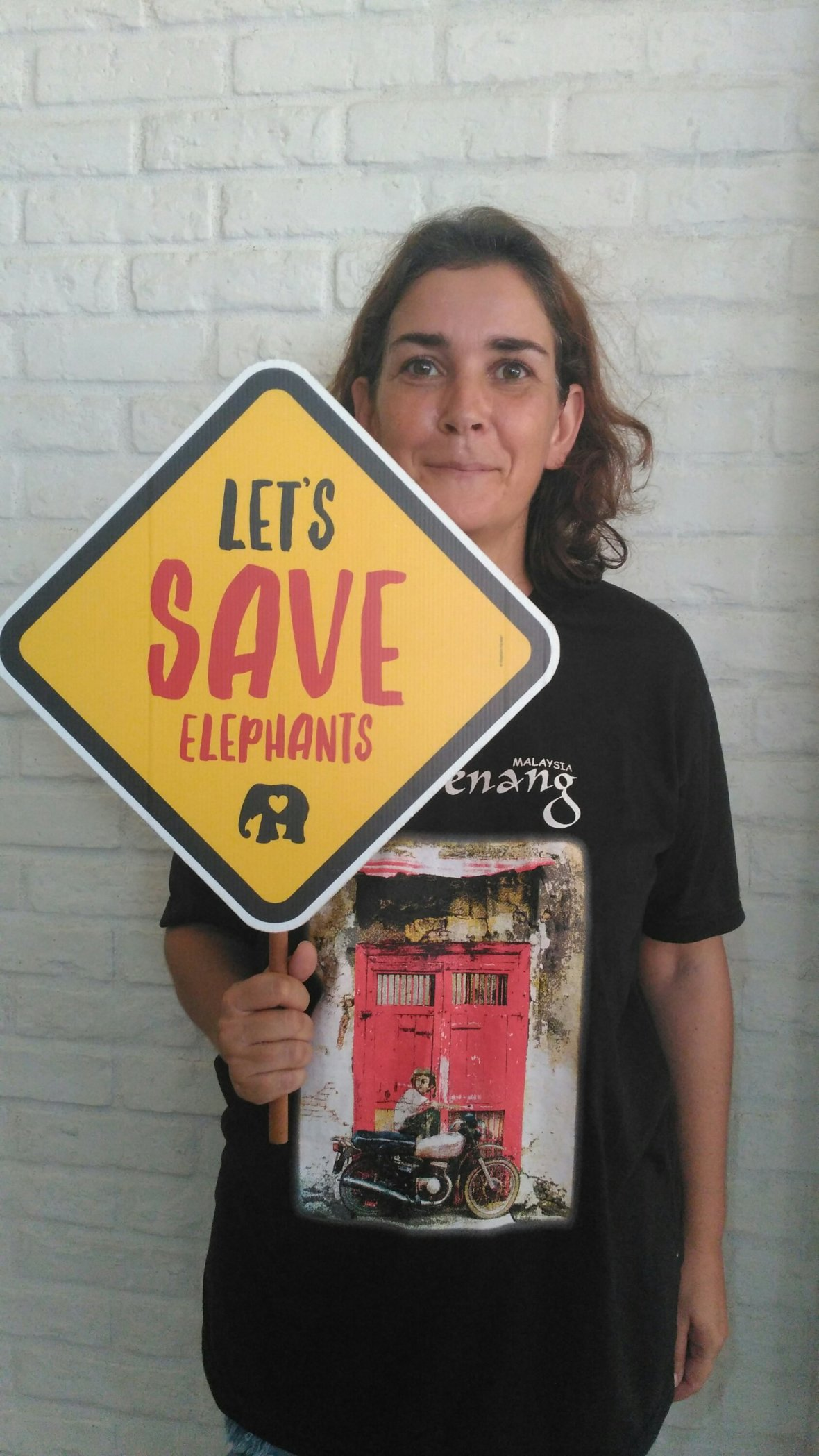 Let's save elephants.
