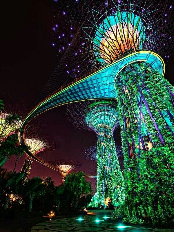 The gardens in Singapore.