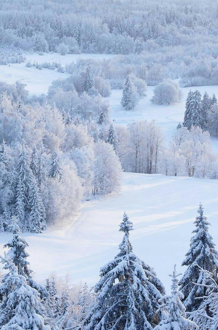 Top 10 Elevator Rides: Estonia