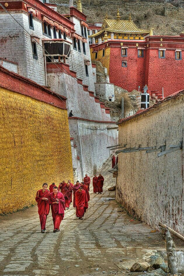 The Silk Route: Himalaya route