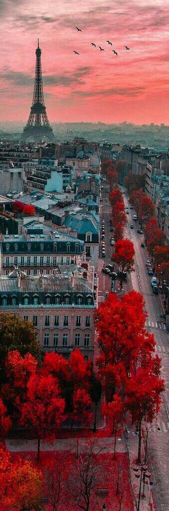 Top 10 Elevator Rides: La Tour Eiffel